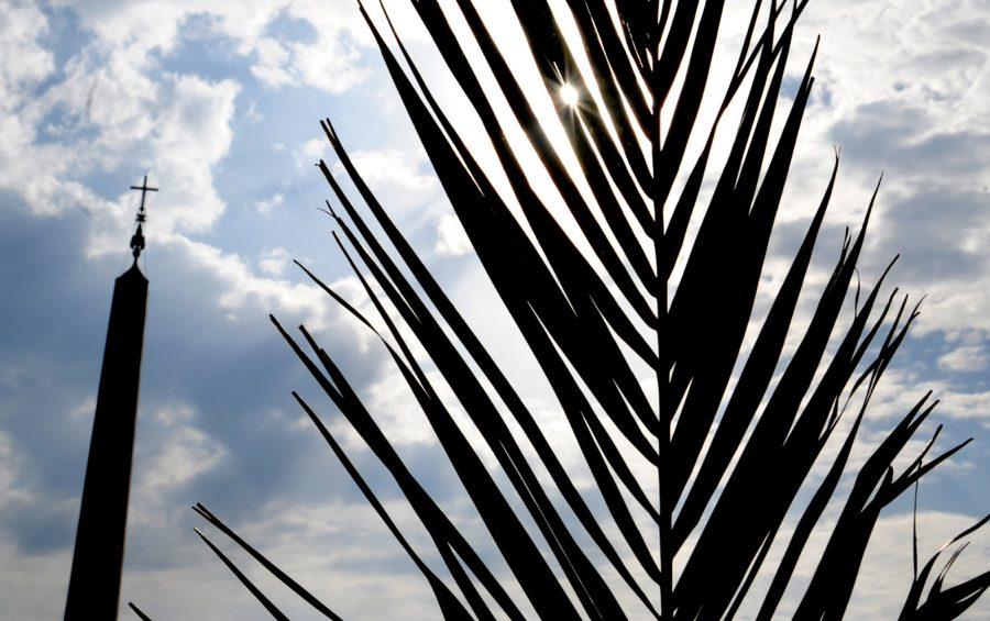 Città DEL VATICANO PIAZZA SAN PIETRO 17-04-2011 DOMENICA DELLE PALME PH: CRISTIAN GENNARI
