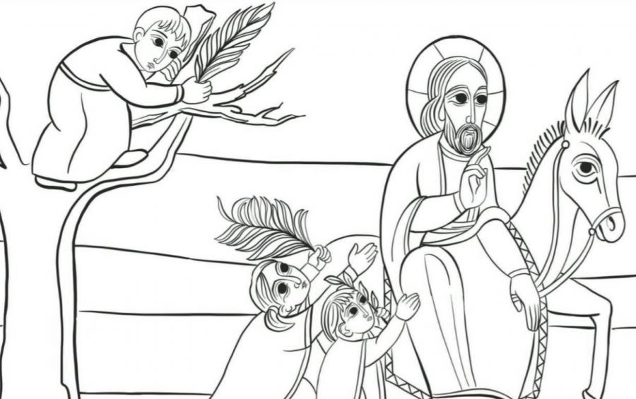 Trame della Domenica. XIV Domenica del Tempo Ordinario per giovani e adulti con disabilità intellettiva – I piccoli e l'asinello